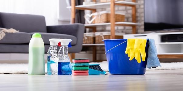 A háztartási alkalmazott foglalkoztatásának szabályai